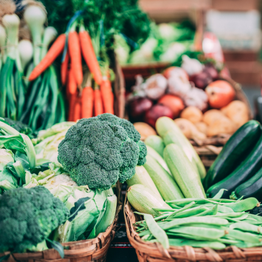 Probiotics for gut health